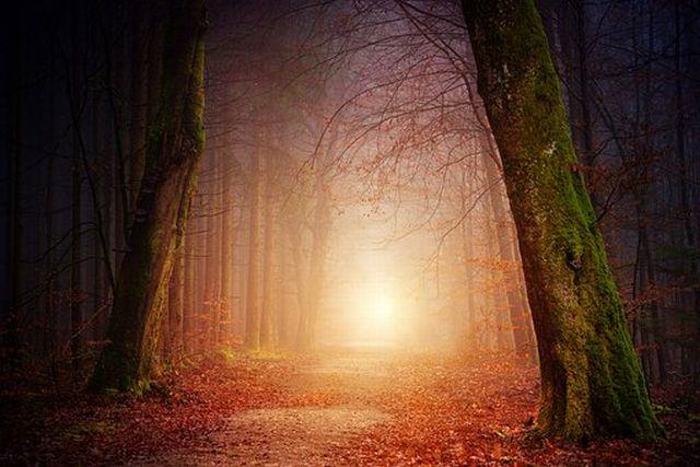 瞑想中のビジョンは妄想だが会話もできる変性意識
