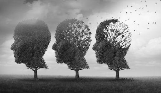 変性意識でみる幻覚~妄想・幻覚は知性・理性を低下させる