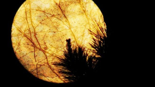 太陽の近くを飛行する巨大UFOが出現~木星と同じ大きさのUFO