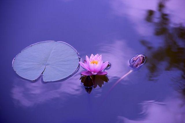 マインドフルネス瞑想のやり方~3つのステップ