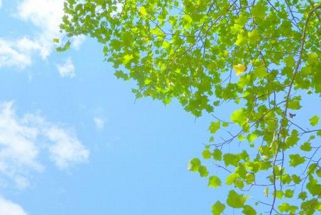 運命を変えカルマを浄化する方法~ハート・エネルギーと天啓気療ヒーリング