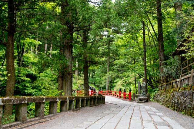 日本人の生まれ変わりは神(天人)が多い~日本人はインドの輪廻転生とは違う