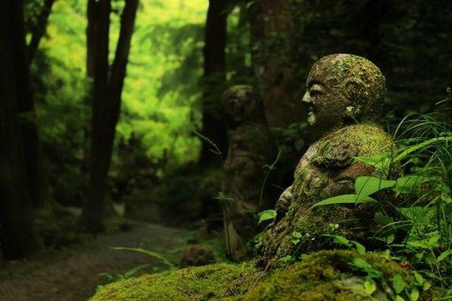 佐藤愛子さんの霊体験本はこわい