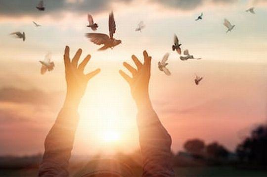 天使の住むアストラル界について~境涯がある、女性が感じやすい、慈悲・ハートが大切