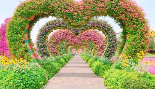 慈悲・ハートの効果~数百回生まれ変わっても幸せになり続ける